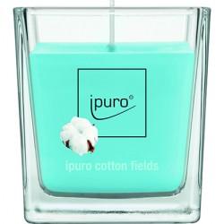 Ipuro Geurkaars Cotton Fields