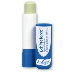 Echinaforce lippenbalsem