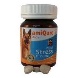 Hond stress