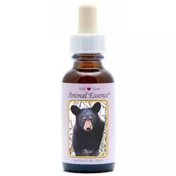 Bear (beer)
