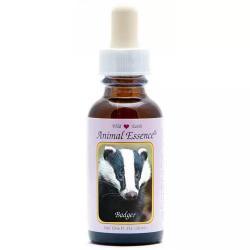 Badger (das)