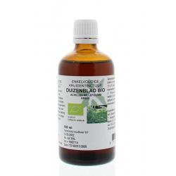 Achillea millefolium / duizendblad tinctuur bio