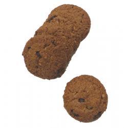 Biscuit chocola & spelt organic