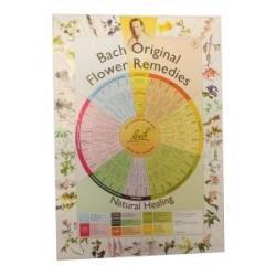 Bach remedies poster A2