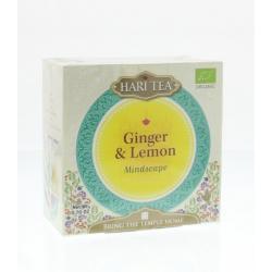 Mindscape ginger & lemon