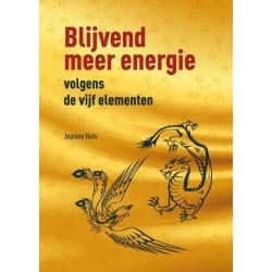 Blijvend meer energie volgens de 5 elementen