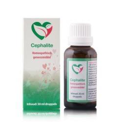 Cephalite