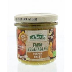 Farm vegetables pompoen & gember
