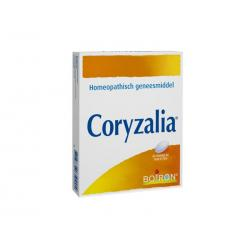 Coryzalia
