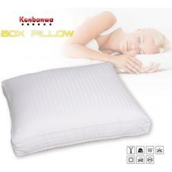 Box pillow