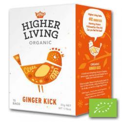 Ginger kick